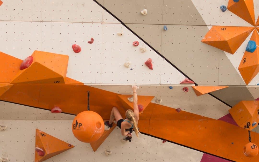 Are climbing gyms profitable?